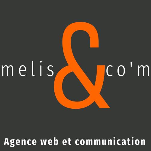Melis-LogoV7.fond gris